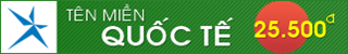 DOMAIN-QT-320x50