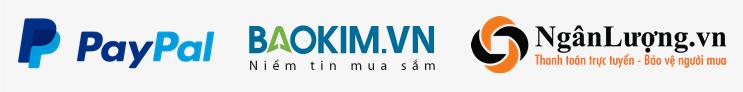 Qua cổng thanh toán, ví điện tử PayPal – Bảo Kim – Ngân Lượng